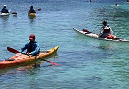 Sports nautiques et plaisance